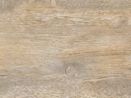 Synch White Oak